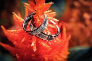 jegygyűrűk fotózása